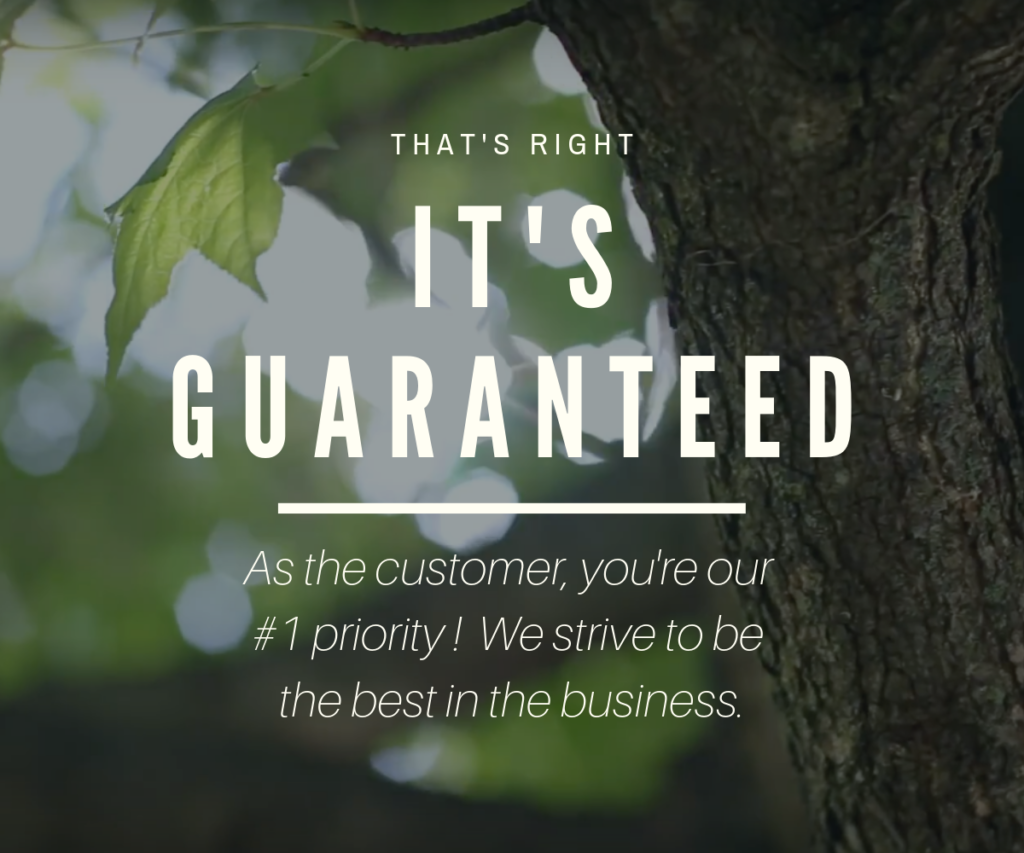 it's-guaranteed-tree-work